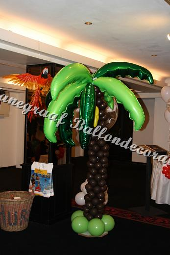 16) palmboom ( op aanvraag)