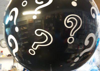 gender ballon(met kleine ballonnen) € 35,00